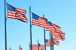 United States flags around the Washington Monument in Washington DC