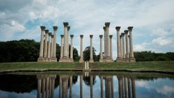United States National Arboretum in Washington District of Columbia