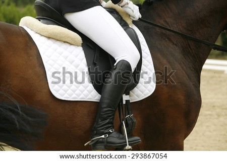 Unknown rider in action on a dressage horse