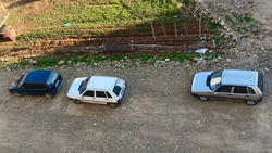 Uno Family and Naturel Environment Cars in Nature gry blue and white