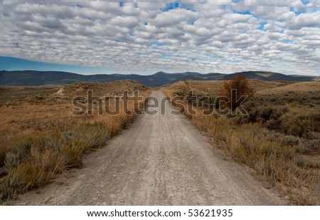 Unpaved road in Montana (Big sky country)