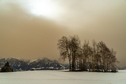 Unreal winter scene in Vorarlberg. Sahara sand is in the air. Trees on snow meadow in the foreground, mountains in the background. yellow colored clouds in the sky dim the light. white snow with trail