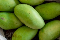 Unripe Green Carabao Mangoes, also known as Philippine mango, on display and for sale at a local market.