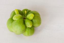 Unripe green tomato of unique, unusual shape. Purple calabash tomato heirloom. Eco vegetables.