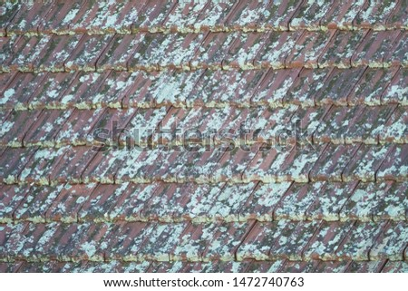 unsightly lichen and moss on clay or concrete exterior roof tiles covering the surface area use as background, backdrop, abstract, wallpaper