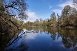 Unspoiled nature and lake in the Rheinauen wetlands in Plittersdorf, Baden-Württemberg, Germany.