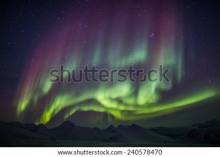 Unusual colorful Northern Lights - Arctic landscape #240578470