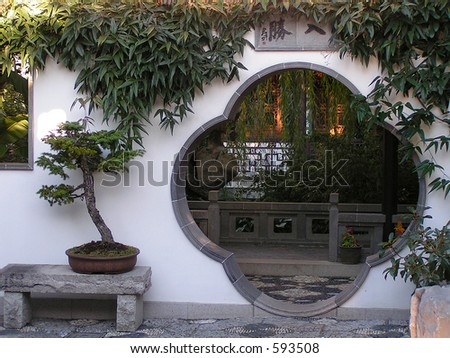 Unusual doorway through stucco wall in chinese garden with curved bonsai tree at left.