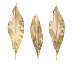 Unusual luxurious beautiful decoration for the house, large leaves of a real plant covered with gold isolated on a white background