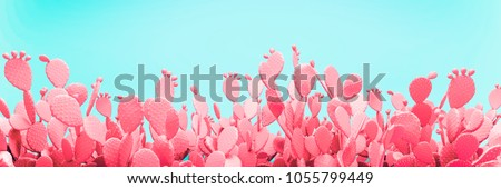 Unusual Pink Cactus Field On Turquoise Background 3d illustration