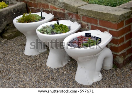 http://image.shutterstock.com/display_pic_with_logo/4500/4500,1128360571,1/stock-photo-unusual-planters-toilets-used-to-raise-alpine-plants-597671.jpg