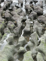 Unusual rock formations and patterns on the beach, smoothed and shaped over time.