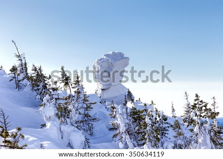 Unusual rock plastered with snow. Winter forest landscape