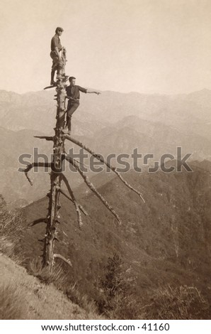 Up a Tree - two young men atop a tall, dead tree scouting out their wilderness surroundings.  A circa 1900, vintage photograph.