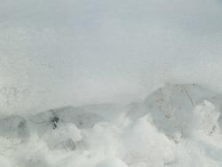 upclose photos of the snow