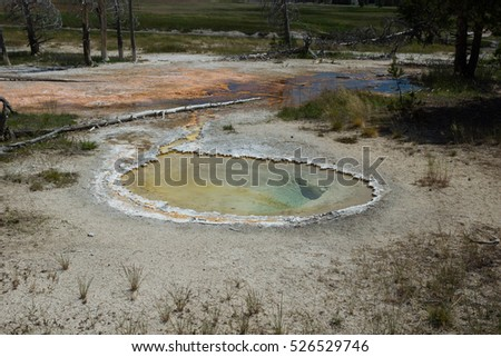 Upper Geyser Basin, Yellowstone National Park, Wyoming, USA #526529746