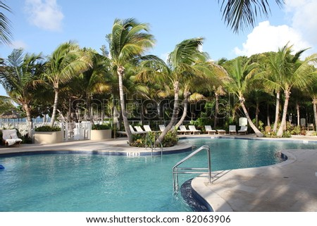 Upscale swimming pool in the Florida Keys, surrounded by healthy palm trees