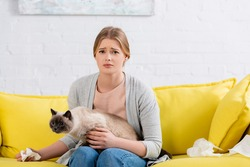 Upset woman holding napkin and siamese cat on couch