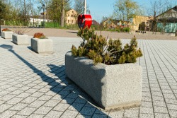 urban architecture, concrete pots with plants on a paved square