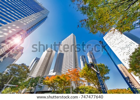 Urban buildings and trees #747477640