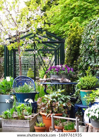Urban garden/ small / mini // English vertical garden nice and green fresh start of the spring to grow your own vegetables                      Stock photo ©