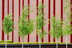 Urban garden with futuristic walls of red brick