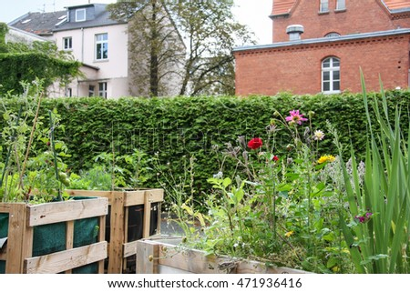 urban gardening #471936416