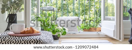 Urban jungle concept kitchen with balcony full of green plant and pouf, real photo, panoramic view