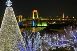 Urban Landscape of Tokyo, Japan during Christmas holidays