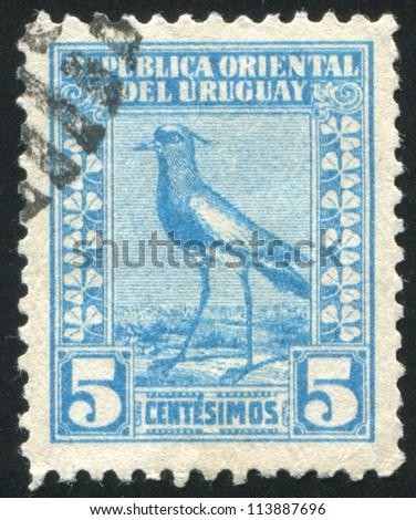 URUGUAY - CIRCA 1923: stamp printed by Uruguay, shows Southern Lapwing, circa 1923
