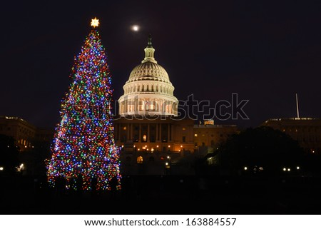 US Capitol building and the Christmas tree at night - Washington DC, United States