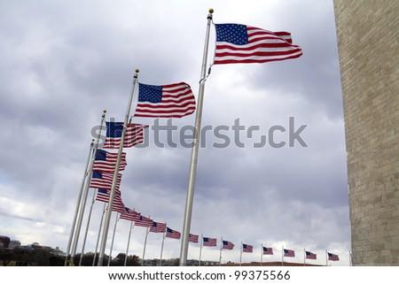 US flags near Washington Monument, Washington DC