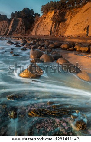 Usa, California. Bowling Ball Beach at low tide at sunset, Schooner Gulch State Beach, in Mendocino County