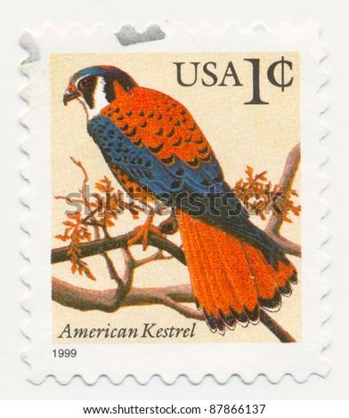 USA - CIRCA 1999: A stamp printed in USA, shows bird American Kestrel (Falco sparverius), series, circa 1999