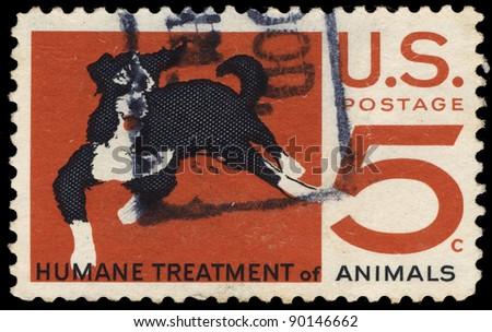 USA-CIRCA 1966: A stamp printed in USA shows Humane Treatment of Animals, Mongrel, circa 1966