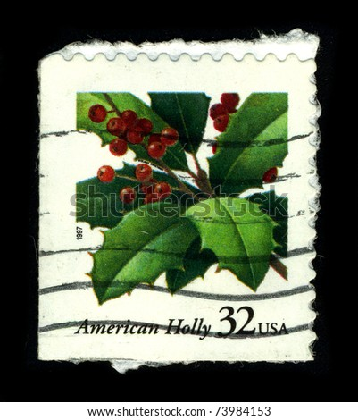 USA-CIRCA 1997:A stamp printed in USA shows image of the Ilex opaca (American Holly) is a species of holly, native to the eastern USA, from coastal Massachusetts south to central Florida, circa 1997.