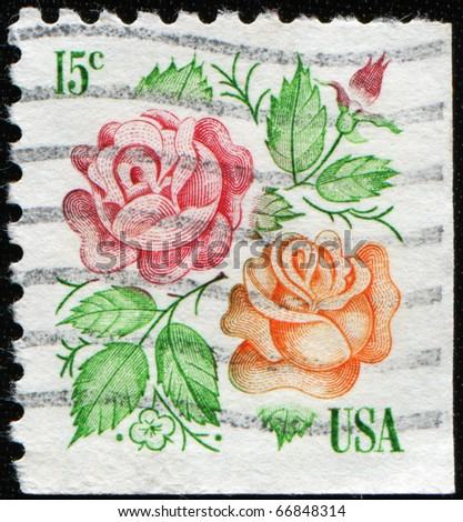 USA - CIRCA 1978: A stamp printed in USA shows two roses, circa 1978