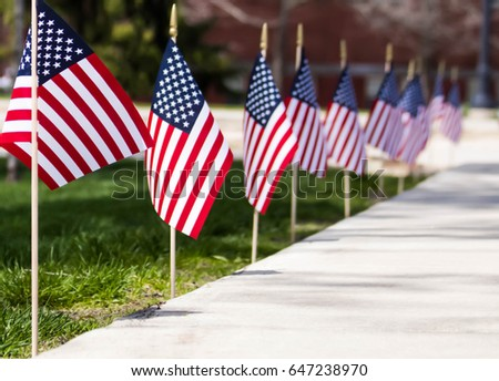 USA flags #647238970