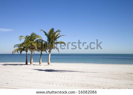 Usa. Florida. Miami. Kery Byscaine. Crandon Beach. - stock photo