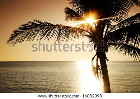 Usa. Florida. Miami. Kery Byscaine. Sunset. - stock photo