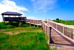 USA, Louisiana, Cameron Parish, Creole Nature Trail, National Scenic Byway, Sabine National Wildlife Refuge