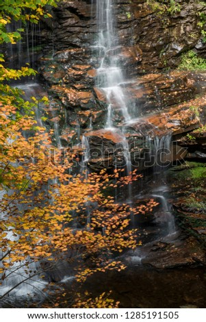 Usa, Pennsylvania, Ricketts Glen State Park. Water cascading down Ganoga Falls, with autumn foliage.