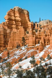 USA, Utah. Spring snow in Red Canyon, Dixie National Forest.
