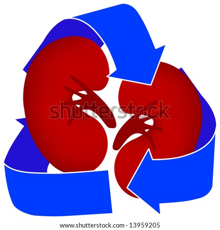 Use this icon to represent organ donation or kidney dialysis.