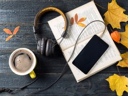 Use your smartphone to learn and listen to audio books. The concept of modern education