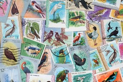 Used stamps with a bird theme(countries Not shown)