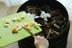 Using a knife to scrape banana peel and apple core into an indoor wormery compost bin