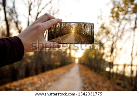 Using a mobile phone. Takes a photo of an autumn alley