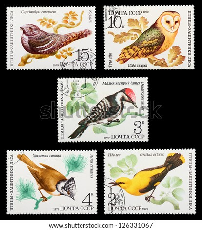 USSR- CIRCA 1979: A set of postage stamps printed in USSR shows birds of forest defenders, series, circa 1979