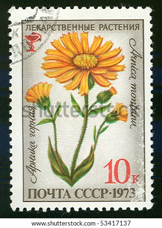 USSR - CIRCA 1973: A stamp printed in the USSR, shows Arnica Montana, circa 1973
